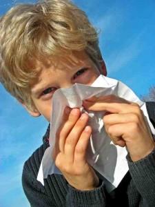 Allergies : 20 façons de prévenir l'allergie