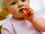 Les aliments seront proposés à bébé un à la fois, afin de vérifier qu'ils ne provoquent pas de réactions. Les produits contenant des colorants, des conservateurs ou des additifs en tout genre doivent également être évités car ils sont allergisants. Pour cette raison, il est préférable de donner à bébé des petits pots mitonnés à la maison plutôt que ceux du commerce dont la composition n'est pas toujours clairement précisée. Enfin, évitez les petits pots contenant des fruits exotiques.