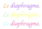 Contraception : le diaphragme