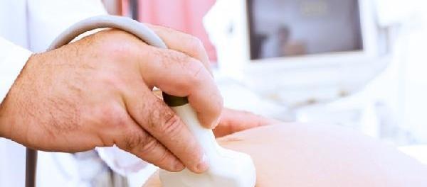 Grossesse : femmes enceintes, attention à la toxoplasmose !