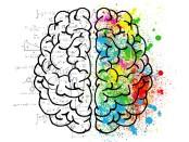 brain-2062057_1920